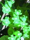 EUROPALMS LED Creangă inflorită cu 160 LED-uri , verzi, 1.2m