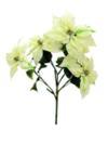 EUROPALMS Buchet de Crăciuniță (Poinsettia), crem, 60cm