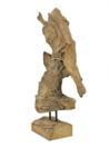 EUROPALMS Obiect din radacina de tec, 60 cm