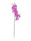 EUROPALMS Ramură de orhidee violet, 100cm