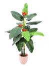 EUROPALMS Tralizia, 16 frunze, 150cm