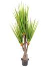 EUROPALMS Plantă sculentă cu frunze sabie, 185cm