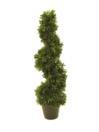 EUROPALMS Arbore spiralat, 61 cm