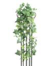 EUROPALMS Iederă verde curgătoare, 100cm