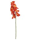EUROPALMS Ramură de orhidee, portocalie, 70cm
