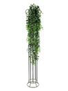 EUROPALMS Iederă verde curgătoare, de lux, 160cm