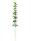 EUROPALMS Ramură de eucalipt din sticlă verde, 81cm, 12 buc.