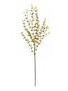 EUROPALMS Ramură verde-gălbui de eucalipt, 110cm