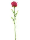 EUROPALMS Trandafir din sticlă vișinie, 81cm, 12 buc