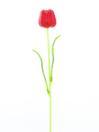 EUROPALMS Lalea din sticlă roșie, 61cm, 12 buc