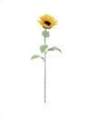 EUROPALMS Floarea soarelui, 110cm