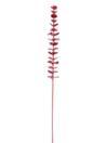 EUROPALMS Ramură de eucalipt din sticlă vișinie, 81cm, 12 buc