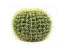 EUROPALMS Cactus butoi, 37cm