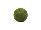 EUROPALMS Sferă din mușchi verde, 30cm