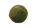 EUROPALMS Sferă din mușchi verde, 50cm
