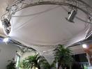 EUROPALMS Panză decorativă stea 500 cm