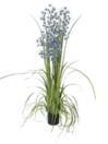 EUROPALMS Orhidee pitice, albastru-violet, 140cm