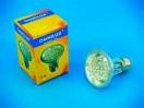 OMNILUX PAR-20 240V E27 24 LED FC